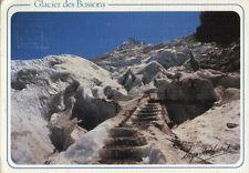 Alte Postkarte - Glassier des Bossons