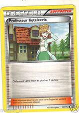 Pokemon  n° 101/114 - Dresseur - Professeur Keteleeria (A999)