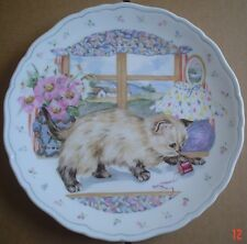 Royal Albert Collectors Plate COUNTRY KITTEN COLLECTION - PLAYTIME Siamese