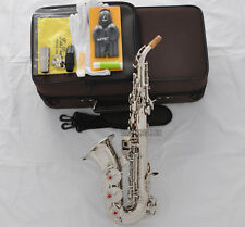 Professional New TaiShan Silver Curved Soprano Saxophone Sax High F# With Case