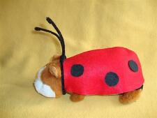 Ladybug Costume for Guinea Pig from R.A.T.S.