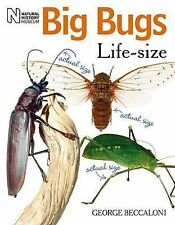 Big Bugs Life-Size by George Beccaloni (Paperback, 2010)