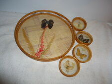 Vintage 70s Bamboo Butterfly Serving Tray & Four Coaster Set; Clean, Exc Cond!