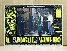 IL SANGUE DEL VAMPIRO fotobusta poster Blood of Vampire Horror Wolfit Shelley