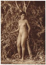 1920's Vintage Polynesian Samoan Woman Female Nude Model Photo Gravure Print b