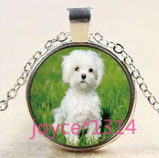 Vintage Cute Dog Cabochon Tibetan silver Glass Chain Pendant Necklace #3564