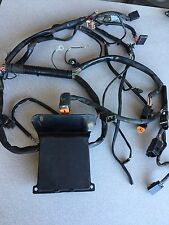 Harley Davidson Fat Boy FLSTF Softail Wiring Harness