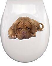 Bordeaux Dogge Dogue de Bordeaux WC Aufkleber toilet sticker  waterproof BD3