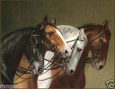 Vintage Horse/Horses/Art Print /Poster/ 17x22 in./German Equestrian Painting