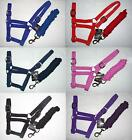 Gallop Adjustable Head Collar and Lead Rope, All Sizes, Choice of 6 Colours