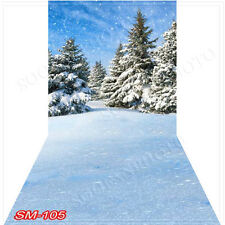 Christmas10'x20'Computer/Digital Vinyl Scenic Photo Backdrop Background SM105B88