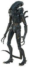 Aliens Predators 1986 Xenomorph Warrior Predator Actionfigur 1/4 56cm NECA