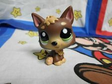 Littlest Pet Shop #2137 Brown Wolf Puppy with Green Eyes