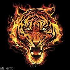 Flaming Tiger HEAT PRESS TRANSFER for T Shirt Sweatshirt Tote Quilt Fabric  293o