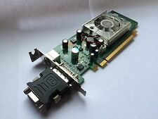 SFF HP 445743-001 445681-001 GEFORCE 8400GS 256MB PCIE DVI TV WITH VGA ADAPTER