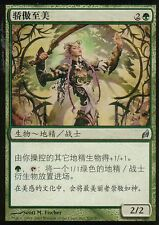驕傲至美/Imperious Perfect | NM | Lorwyn | Korean?! | Magic MTG