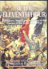 At the Eleventh Hour - Hugh Cecil & Peter H. Liddle Paperback