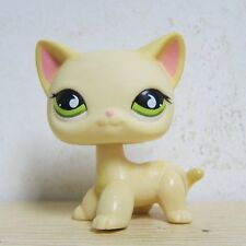 Littlest Pet Shop Collection LPS #733 Green Eye Short Hair Kitty Cat Toy