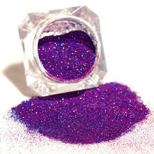 1Box Chic Manicure Nail Art Tips Glitters Purple Starry Holographic Laser Powder