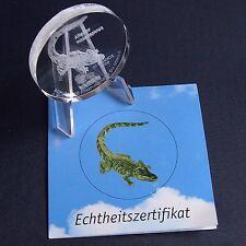 Glasmünze Kongo 10 Francs 2006 Alligator Glas Gedenkmünze + Zfk*