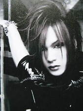 the GazettE STACKED RUBBISH NIPPON BUDOKAN Official Limited Pamphlet JAPAN RUKI