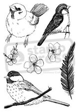 A6 'Collection Of Birds' Unmounted Rubber Stamp (SP005037)