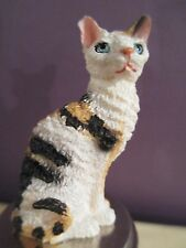 CAT CORNISH  REX  TORTISE & WHITE ~  WINE STOPPER