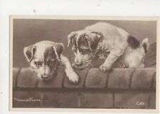 Minnie Keene Vintage Dog Art Postcard 141b