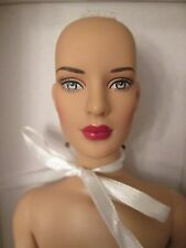 Diana Basic Tonner Doll Nude DC Stars Fit Body Wonder Woman Prince Head Stains