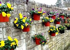 "PLANT POT HOLDERS HANG 4"" FLOWER POTS ON WALLS, FENCES IDEAL SUCCULENTS & CACTI"
