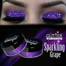 GlitterWarehouse Loose Cosmetic Glitter Powder Dust Eyeshadow Holographic Purple