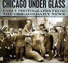 Chicago under Glass: Early Photographs from the Chicago Daily News-ExLibrary
