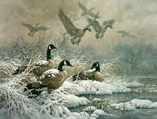 "Larry Fanning ""Winter Retreat"" Geese AP Artist Proof Ltd Ed Lithograph"