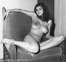 1960s Lillian Parker Large Breasts Vintage Nude Pinup 8  x  8  Photograph