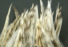"""1/8 oz. Strung Natural Chinchilla Indian Rooster 3"""" to 5"""" Neck Hackle Pack"""