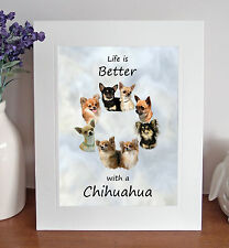 """Chihuahua 'Life is Better' 10"""" x 8"""" Mounted Picture Print Image Fun Novelty Gift"""