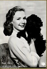 PIPER LAURIE Attrice PC Cinema Star PIN UP Sexy Girl w Dog Circa 1960s