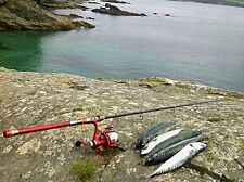 SEA FISHING TACKLE SEA FISHING EQUIPMENT SEA FISHING GEAR SEA FISHING ROD & REEL