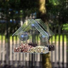 Acrylic Transparent Bird Squirrel Feeder Birdhouse With Window Suction Cup Mount