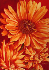 Angela Bionda Sunnyside Up Poster Kunstdruck Bild 98x69cm - Kostenloser Versand