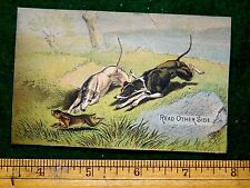 1870s-80s Hunting Dogs Chasing Rabbit A C Yates & Co Victorian Trade Card F22