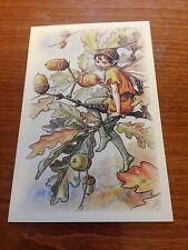 Cicely Mary Barker Flower Fairy Postcard - Acorn Fairy - NEW