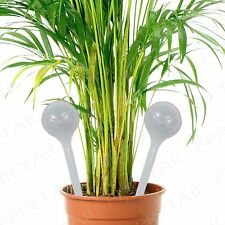 8 x self Arrosage Globes indoor outdoor POT système d'irrigation gadget baignoire