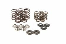 HotCams Yamaha Raptor Rhino 660 Valve Spring Kit SKYFM660S2 2001-2005 Hot Cams