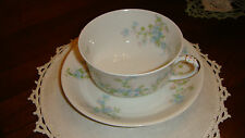 Vintage Haviland limoge France Teacup And Saucer