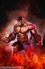 Incredible Hulks Poster by Adi Granov Marvel Comics NEW SEALED
