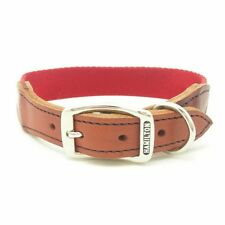 "HAMILTON CHUTES Nylon Parachute Cord Dog Collar with Leather Ends, 20"" x 1"", Red"