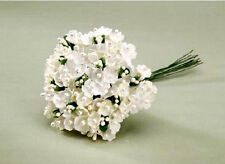 Forget Me Not Flower Cluster with Pearl Centers Cream 12 heads 4 inch   B318