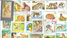 Wildcats-collection 100 all different stamps-medium-large