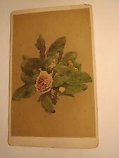 Lorbeer und Rose - Blume / CDV